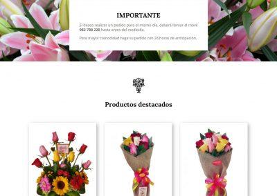 Florería Exotica